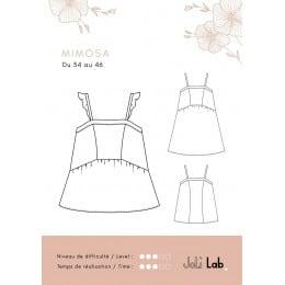 Mimosa Dress/Top